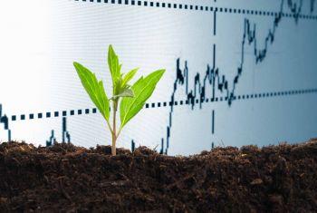 Цены на минудобрения в Башкирии в 2019г выросли на 12-28%, аграрии компенсируют затраты доходами от продажи зерна