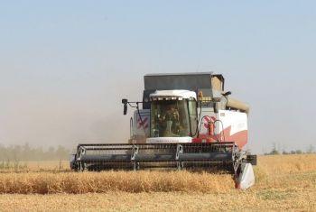 В Башкортостане  уборку яровых зерновых и зернобобовых культур ведут 44 района