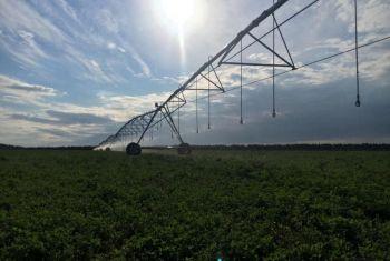 В 2022 году в Башкортостане планируют построить 4,7 тыс. га мелиоративных систем