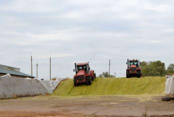 Минсельхоз РБ: В хозяйствах региона завершается заготовка кормов