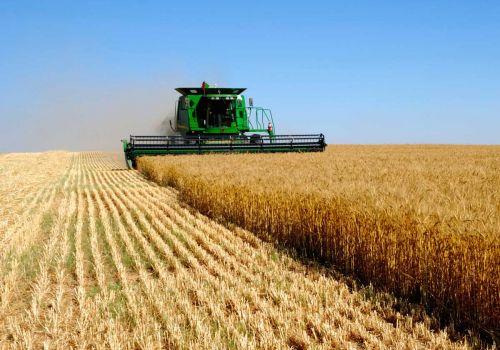 Президент России Владимир Путин утвердил новую редакцию Доктрины продовольственной безопасности РФ