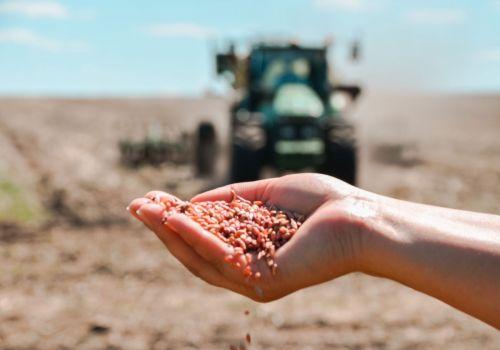 Более 6,5 млрд рублей льготных кредитов на сев одобрили аграриям Башкортостана