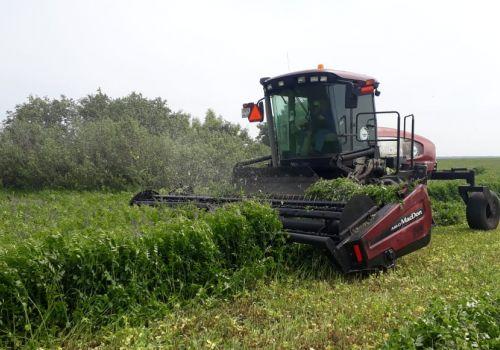 Аграрии республики заготовили миллион тонн сенажа