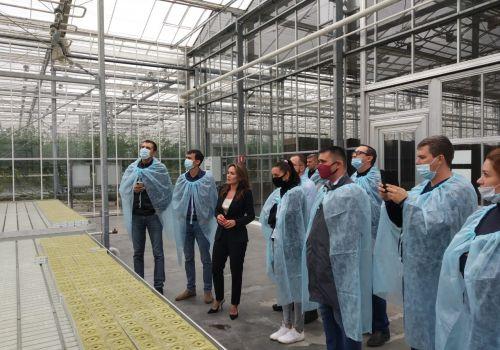 «Лидеры АПК» изучили опыт лучших тепличных хозяйств Башкортостана