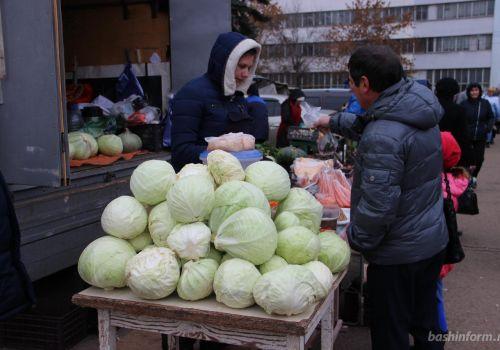 На двух ярмарках выходного дня в Уфе продано 18 тонн овощной продукции и мёда